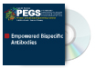 Empowered Bispecific Antibodies and Antibody-Drug Conjugates
