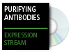 Purifying Antibodies