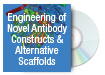 Engineering of Novel Antibody Constructs & Alternative Scaffolds