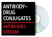 Antibody Conjugate Therapeutics: Potential and Challenges