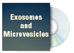 Exosomes and Microvesicles